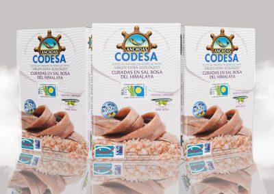 codesa_04